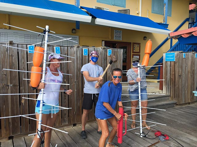 Divi Dive staff getting ready to install coral nursery trees